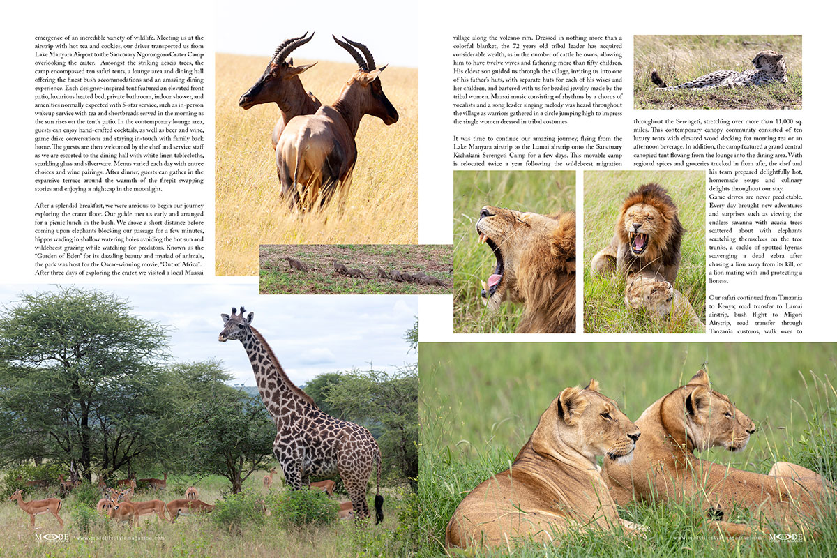 An African Adventure: Mode Lifestyle Magazine - Living A Full Life Issue 2020 - Page 84-85